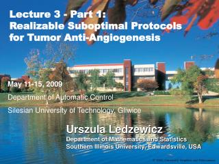 Lecture 3 - Part 1:  Realizable Suboptimal Protocols for Tumor Anti-Angiogenesis