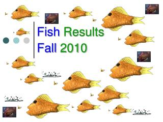 Fish  Results Fall  2010