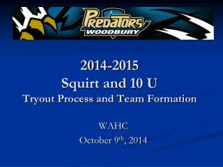 2014-2015  Squirt and 10 U  Tryout Process and Team Formation