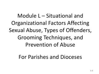 Situational and Organizational Factors Related to Sexual Abuse of Minors  by Catholic Priests
