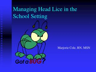 Managing Head Lice in the School Setting