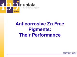 Anticorrosive Zn Free Pigments:  Their Performance