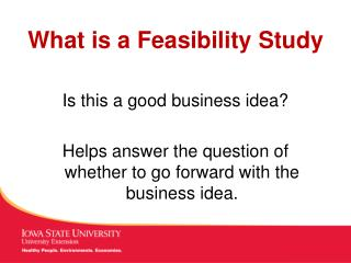 PPT - Lecture 1 Definition of Business Feasibility Study PowerPoint