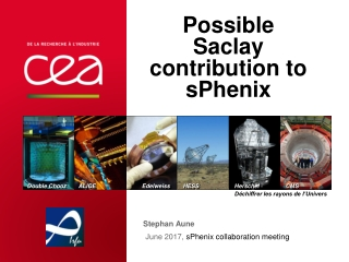 Possible Saclay contribution to sPhenix