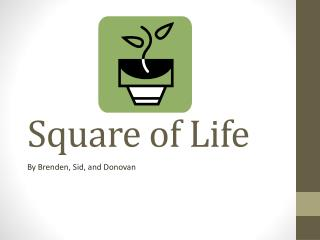 Square of Life