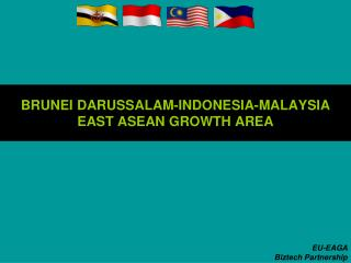 BRUNEI DARUSSALAM-INDONESIA-MALAYSIA  EAST ASEAN GROWTH AREA