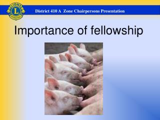 Importance of fellowship