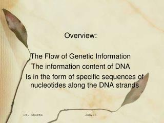 Overview:  The Flow of Genetic Information  The information content of DNA