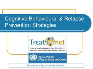 Cognitive  Behavioural  & Relapse Prevention Strategies