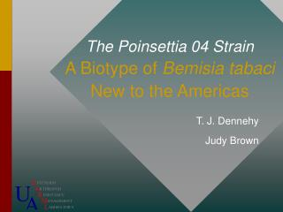 The Poinsettia 04 Strain A Biotype of  Bemisia tabaci New to the Americas
