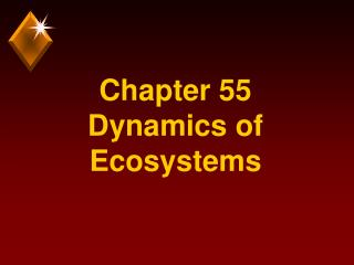 Chapter 55 Dynamics of Ecosystems