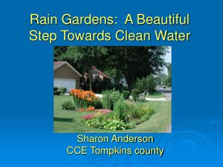 Rain Gardens:  A Beautiful Step Towards Clean Water