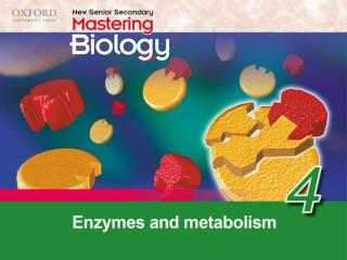 Think about… 4.1 Metabolism 4.2 Properties and actions of enzymes