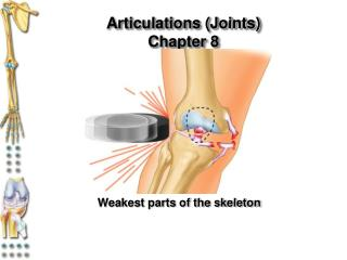 Articulations (Joints) Chapter 8