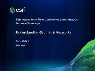 Understanding Geometric Networks