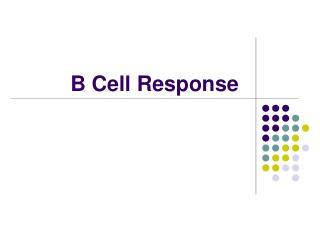 B Cell Response