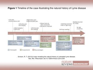Figure 1  Timeline of the case illustrating the natural history of Lyme disease