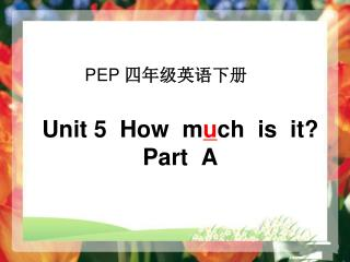 Unit 5  How  m u ch  is  it? Part  A