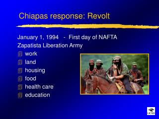 Chiapas response: Revolt