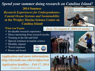 2014 Summer  Research Experiences for Undergraduates: Coastal Ocean Systems and Sustainability