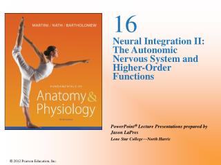 16 Neural Integration II: The Autonomic Nervous System and Higher-Order Functions