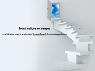 Brand culture on campus  --- attitudes toward products of  famous brands  from undergraduates