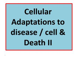 Cellular Adaptations to disease / cell & Death II