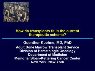 How do transplants fit in the current therapeutic schema?