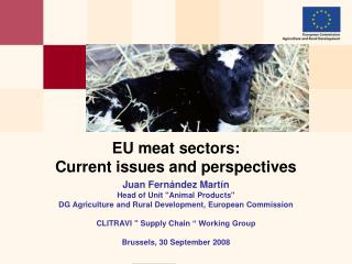 EU meat sectors:  Current issues and perspectives