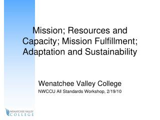 Mission; Resources and Capacity; Mission Fulfillment; Adaptation and Sustainability