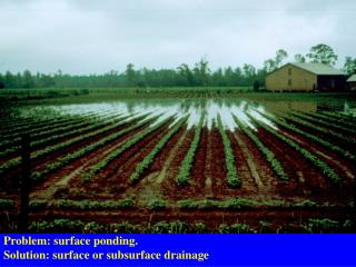 Problem: surface ponding. Solution: surface or subsurface drainage