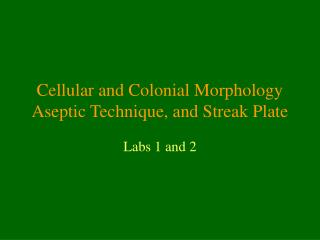 Cellular and Colonial Morphology Aseptic Technique, and Streak Plate