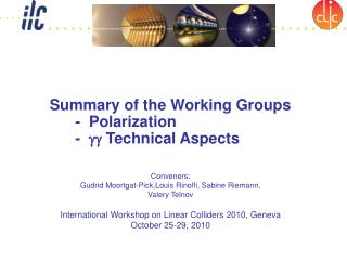 Summary of the Working Groups    -  Polarization       -   gg  Technical Aspects