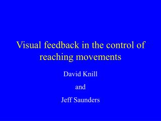 Visual feedback in the control of reaching movements