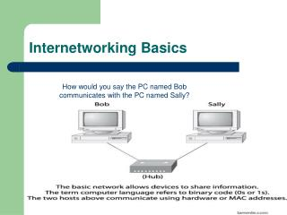 Internetworking Basics