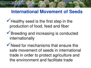 International Movement of Seeds