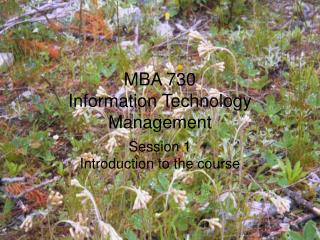 MBA 730 Information Technology Management