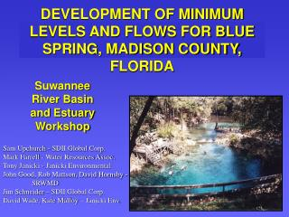DEVELOPMENT OF MINIMUM LEVELS AND FLOWS FOR BLUE SPRING, MADISON COUNTY, FLORIDA