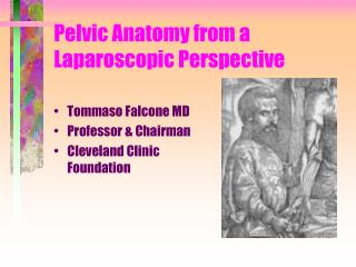 Pelvic Anatomy from a Laparoscopic Perspective