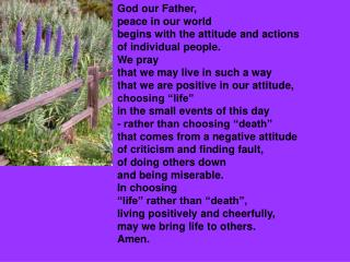 God our Father, peace in our world begins with the attitude and actions of individual people.