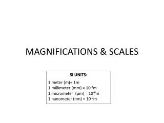 MAGNIFICATIONS & SCALES