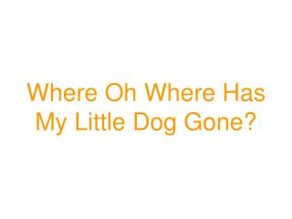 Where Oh Where Has My Little Dog Gone?