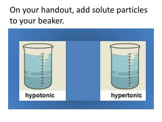 On your handout, add solute particles to your beaker.