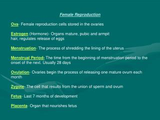 Female Reproduction Ova -  Female reproduction cells stored in the ovaries