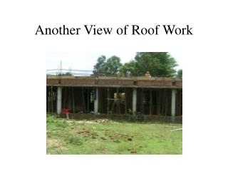 Another View of Roof Work