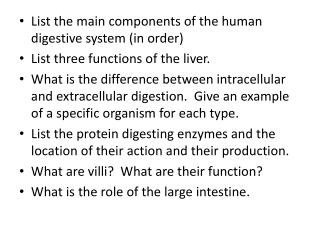 List the main components of the human digestive system (in order)
