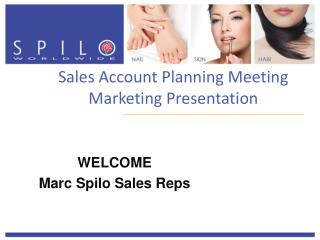 Sales Account Planning Meeting Marketing Presentation