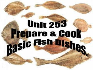 Unit 253 Prepare & Cook  Basic Fish Dishes.