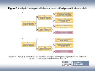 Figure 3  Analysis strategies with biomarker-stratified phase III clinical trials