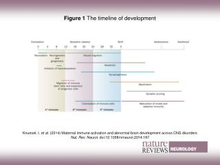 Figure 1  The timeline of development
